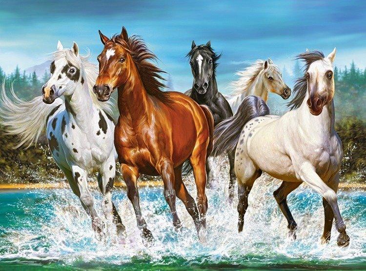 Call Of Nature Zew Natury Zwierzęta Konie Koń Puzzle 2000 Elementów Castorland Puzzle Puzzle Zwierzęta Sklep Z Grami Planszowymi Jaskinia Graczy Pl